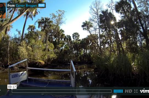 Apalachicola Airboat Adventures