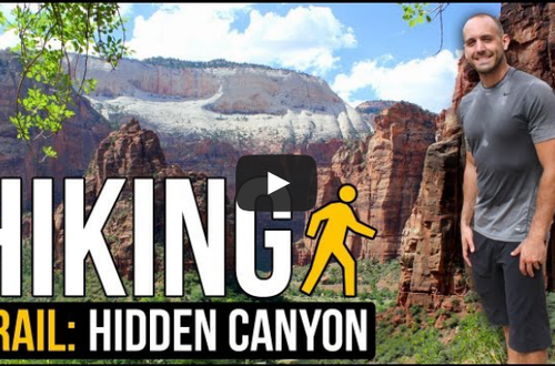 There are a lot of hiking trails in Zion National Park and finding the right one for your fitness level is fairly easy.