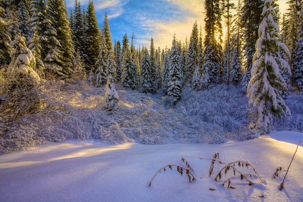 Winter in McCall, Idaho