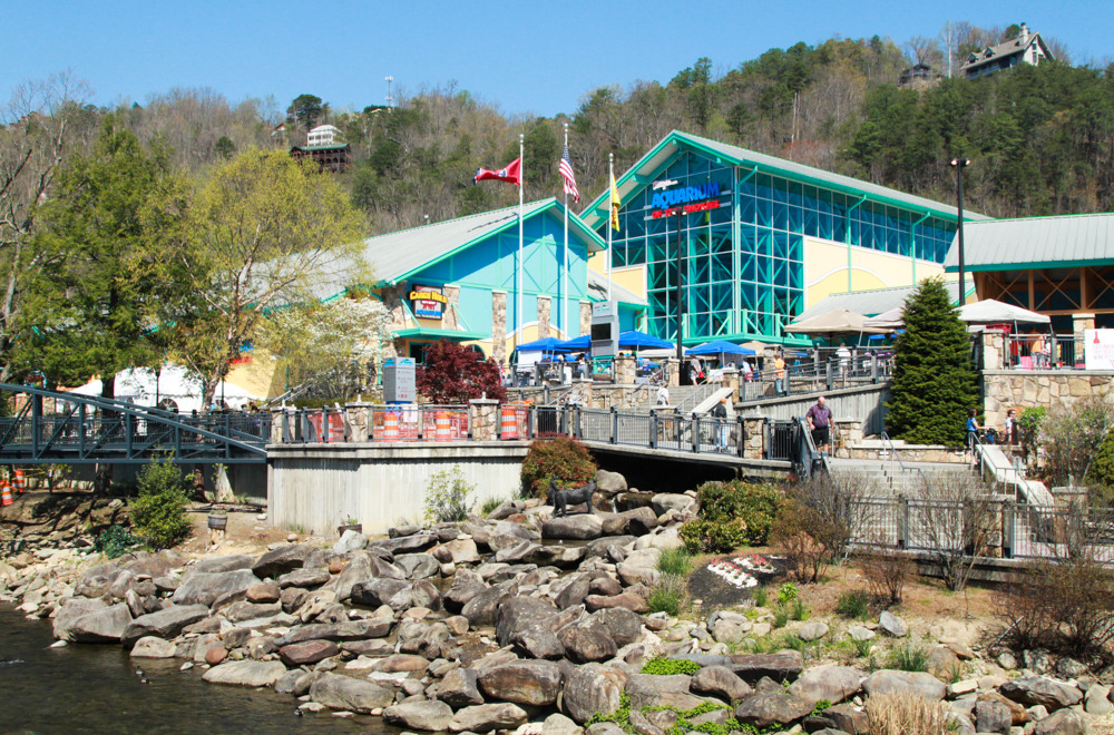 Exploring art and culture in gatlinburg tennessee for Gatlinburg civic center craft show