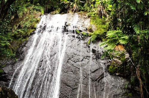El Coco Falls in El Yunque Rainforest