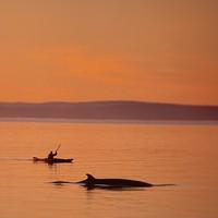 Sea Kayaking Photo by: Jean-Pierre Huard